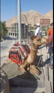 Jordan - Holy Land Tour